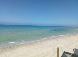 הכתם מול חוף סידנא עלי. צילום משרד הבריאות