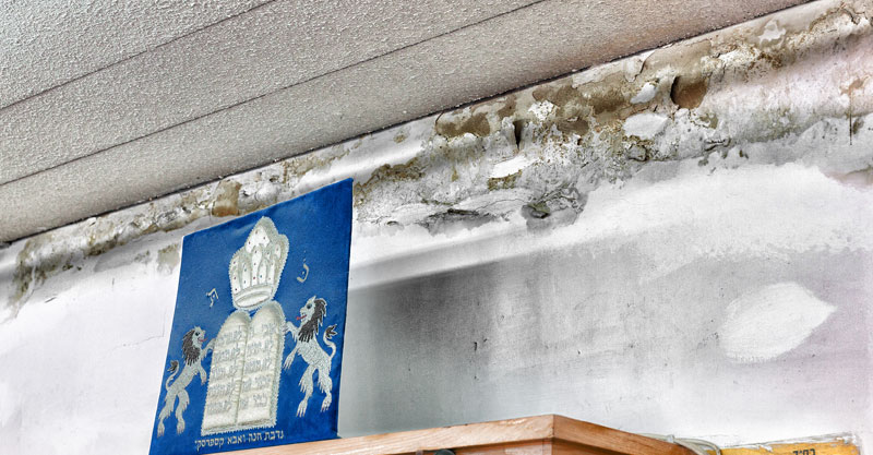 רטיבות בבית הכנסת הגדול בהרצליה. צילום קוב קלמנוביץ'
