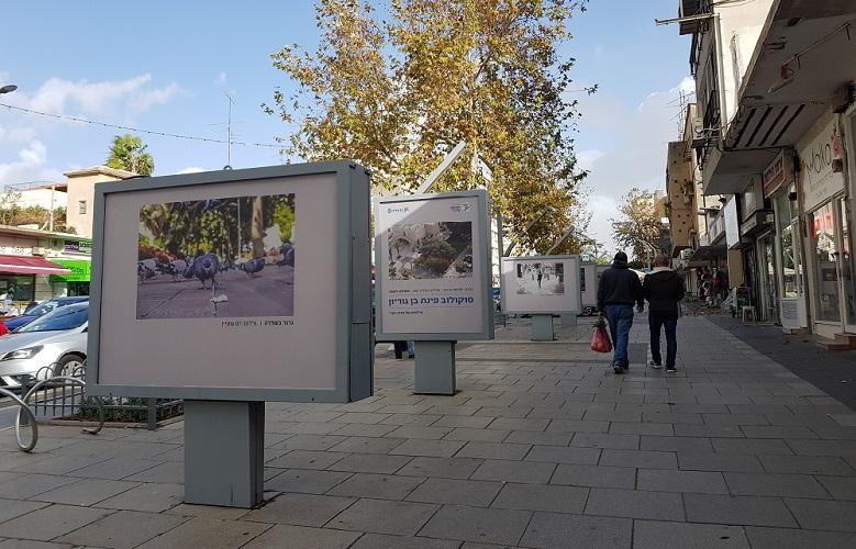 תערוכת החוצות ברחוב סוקולוב. צילום: עיריית הרצליה