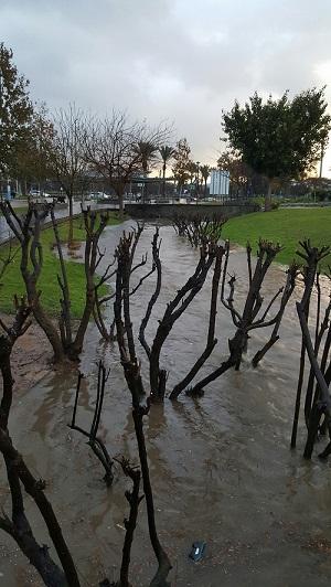 פארק הרצליה מוצף, היום. צילום: עיריית הרצליה