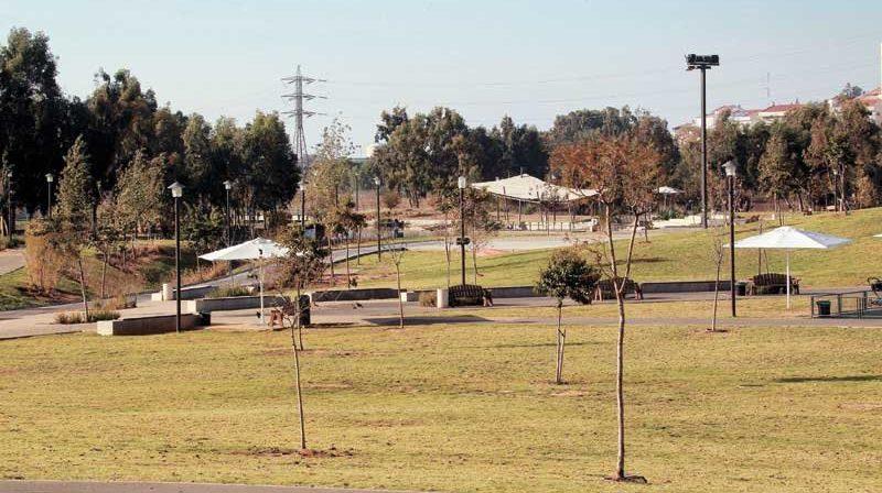 פארק הרצליה. צילום עזרא לוי