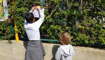 תולים שלטים בשכונה