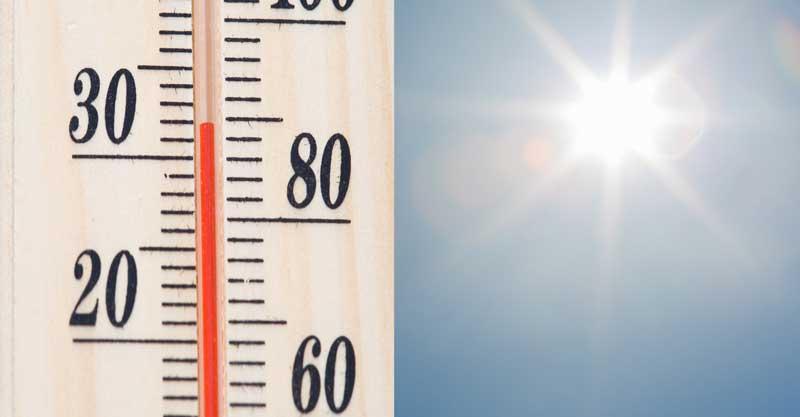 מד חום. TR-H-C-מד-טמפרטורה-קיץ-צילום-אי.אס.אי