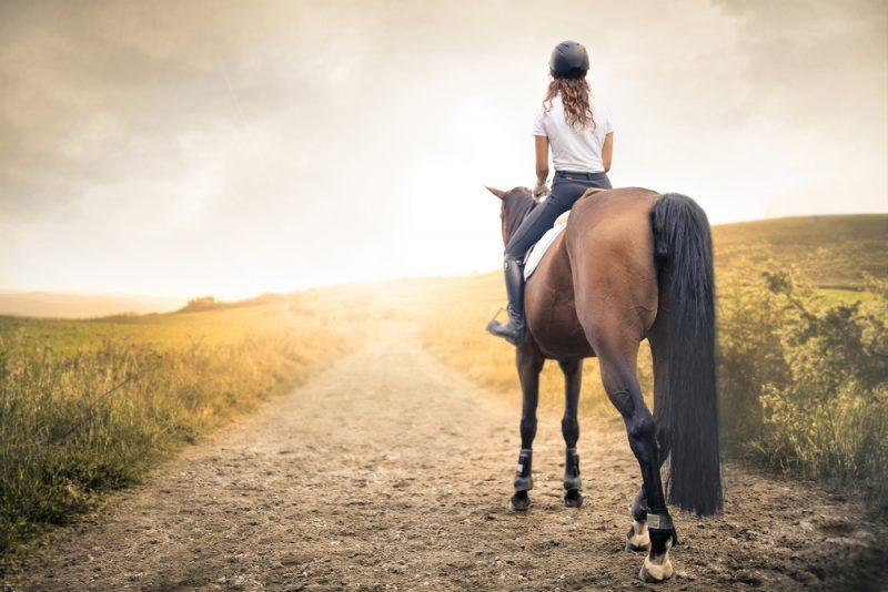 רכיבה טיפולית בשרון. תמונה ממאגר Shutterstock