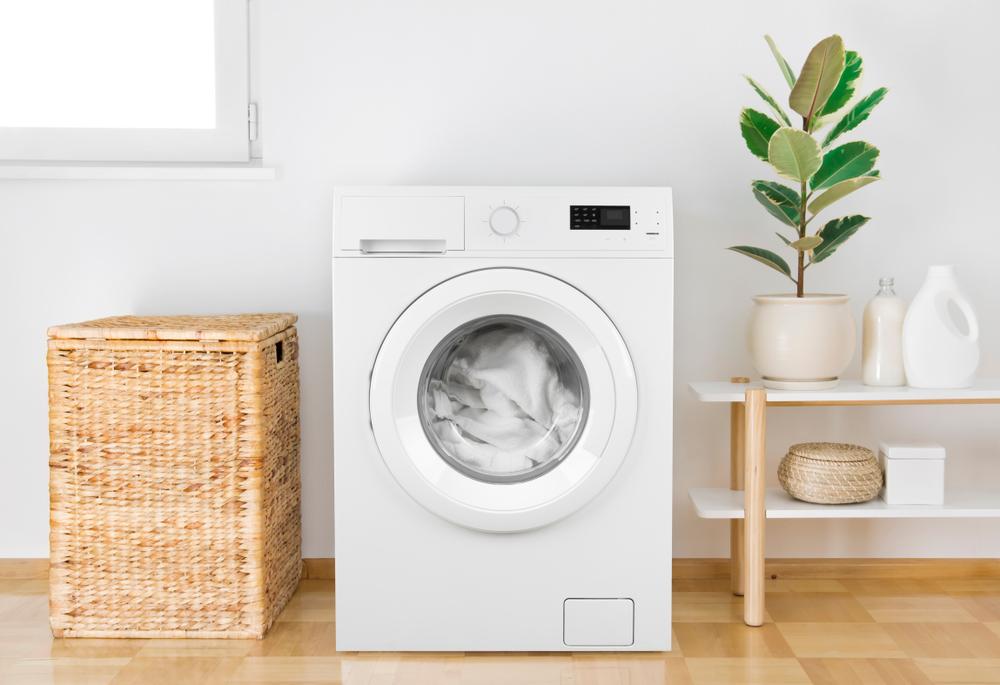 מכבסות בראש העין שכדאי לכם להכיר ( Shutterstock) צילום: Didecs