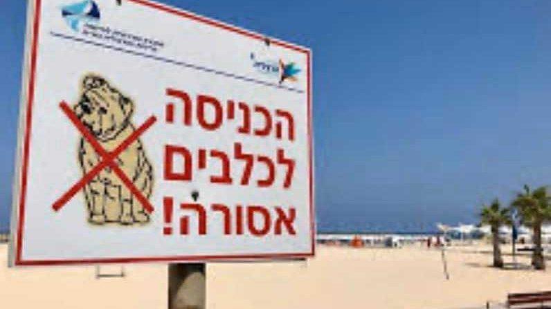 שלט האוסר על כניסת כלבים לחוף בהרצליה. צילום באדיבות התושבים