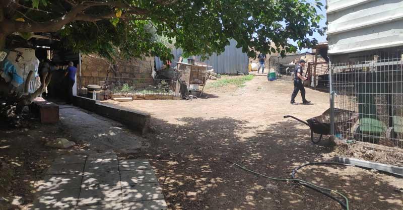 פשיטת עיריית הרצליה ומשרד החקלאות על החווה ברחוב נתיבות. צילום באדיבות דוברות העירייה
